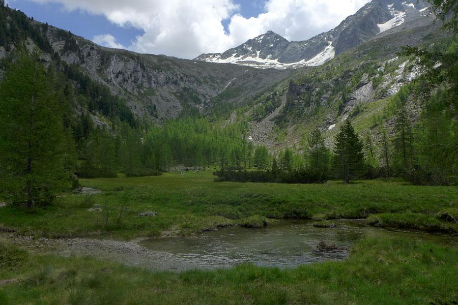 Kaponigtal - Moosboden, Reißeck-Höhenweg - Wanderung, Reißeckgruppe, Mölltal, Kärnten