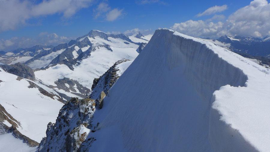 Östliche Simonyspitze - Südostgrat, Firngrat mit Blick zum Großvenediger - Bergtour, Essener-Rostocker-Hütte