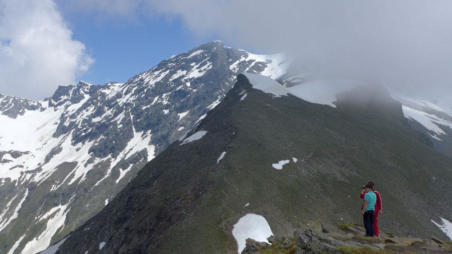 Grauleitenspitze - Westflanke mit Steigspur - Wanderung, Bergtour, Hannoverhaus, Ankogel