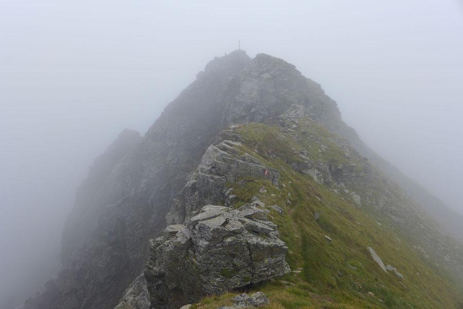 Polinik - Gipfel vom Vorgipfel gesehen - Normalweg, Bergtour, Kreuzeckgruppe, Kärnten