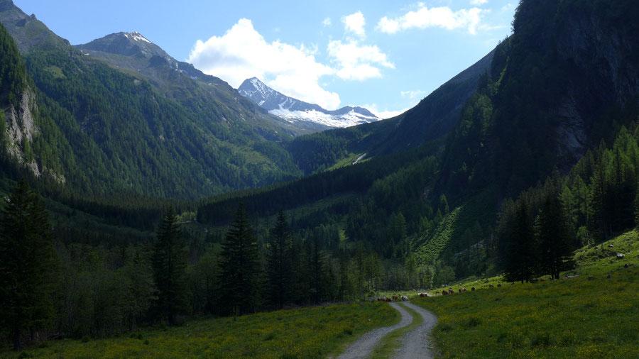 Reißeck Höhenweg - Dösener Tal - Bergtour, Reißeckgruppe, Kärnten