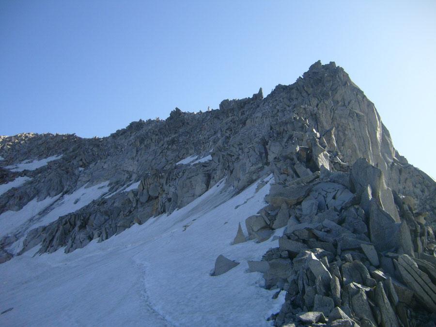 Großer Löffler - Trippachscharte Blick zur Trippachspitze - Bergtour, Zillertaler Alpen, Ahrntal, Südtirol