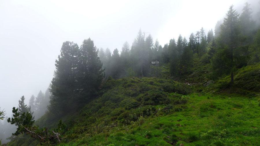 Kälberhüttl im Nebel - Mösernhütte Mernikalm - Wanderung, Kreuzeckbahn, Kärnten
