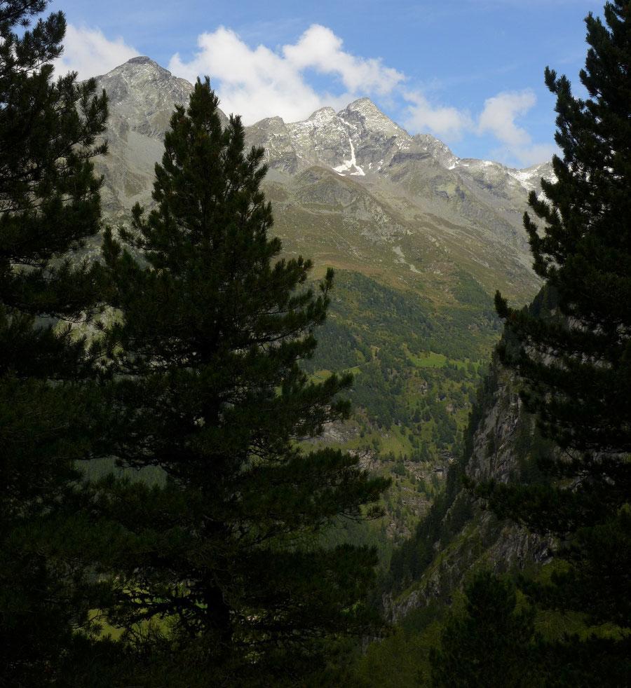 Gelttalalm - Wanderung, Gelltal, Rieserfernerhütte - Aufstieg von Rein in Taufers