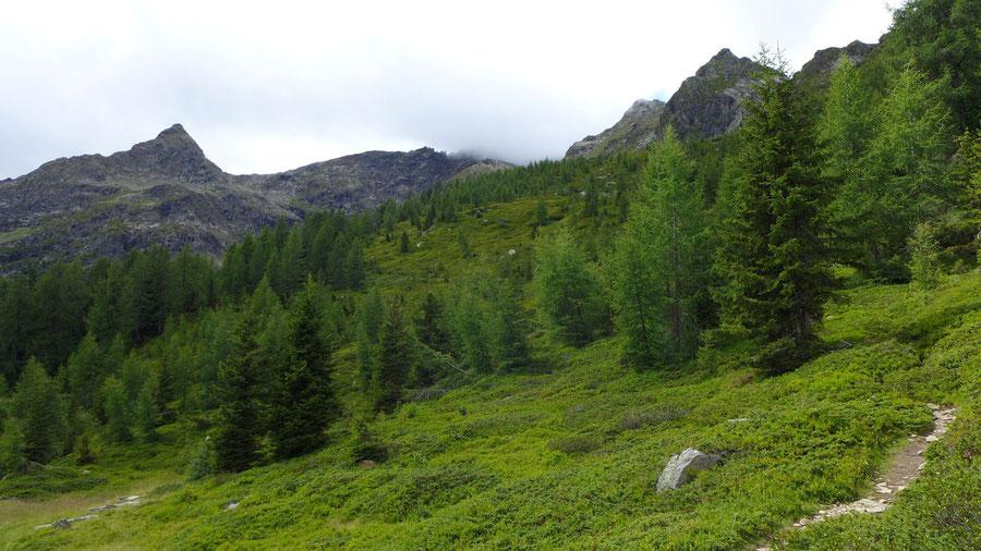 Polinik - Gamskarspitze - Normalweg, Bergtour, Kreuzeckgruppe, Kärnten
