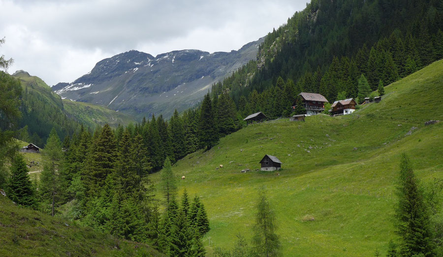 Reißeck Höhenweg - Kohlmaierhütte Hinteregggraben - Bergtour, Reißeckgruppe, Kärnten