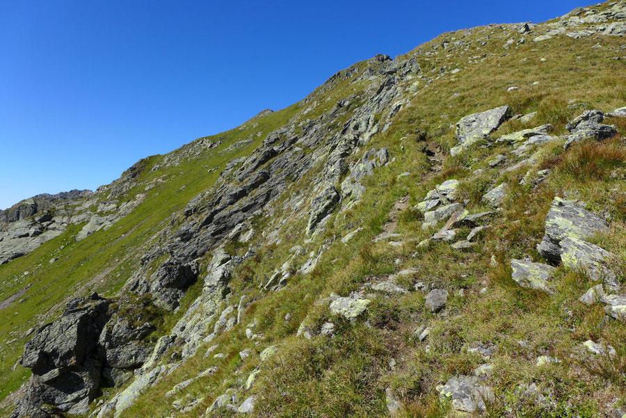 Kreuzeck - Trittspuren oberhalb Kaltseetörl - Ostgrat, Bergtour, Feldnerhütte, Kreuzeckgruppe