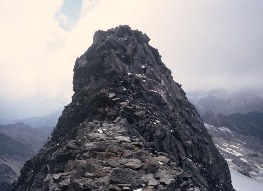Hoher Weißzint - Gehstrecke am Südwestgrat - Bergtour, Zillertaler Alpen, Südtirol, Edelrauthütte