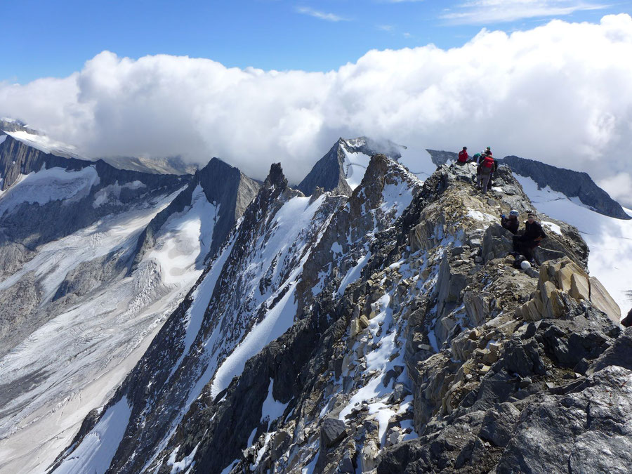 Hochfeiler - Gipfel Blick in die Nordwand - Normalweg, Bergtour, Zillertaler Alpen, Südtirol