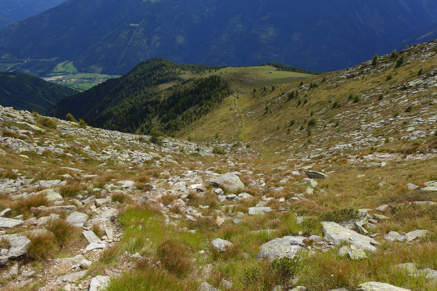 Kampleck - Steig in der Südflanke - Bergtour, Reißeckgruppe, Mölltal, Kärnten