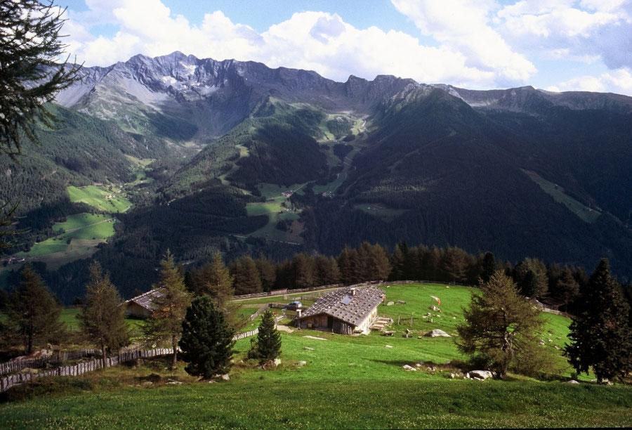 Keilbachspitze - Holzerbödenalm über'm Ahrntal - Bergtour, Zillertaler Alpen, Ahrntal, Südtirol