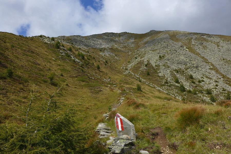 Kampleck - Südseite - Bergtour, Reißeckgruppe, Mölltal, Kärnten