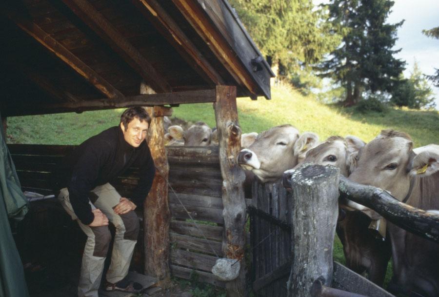 Pfunderer Höhenweg - Trenser-Joch-Hütte, Jungvieh - Wanderung, Pfunderer Berge, Südtirol