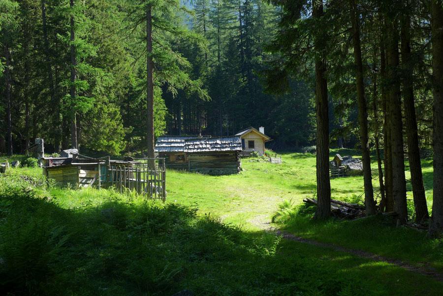 Kaponigtal - Waldlichtung mit der Bödenhütte - Wanderung, Reißeckgruppe, Mölltal, Kärnten