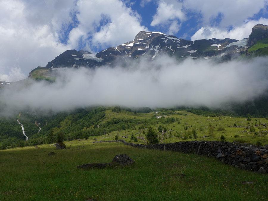 JWD Bergtouren Käfertal & Trauneralm Großes Wiesbachhorn