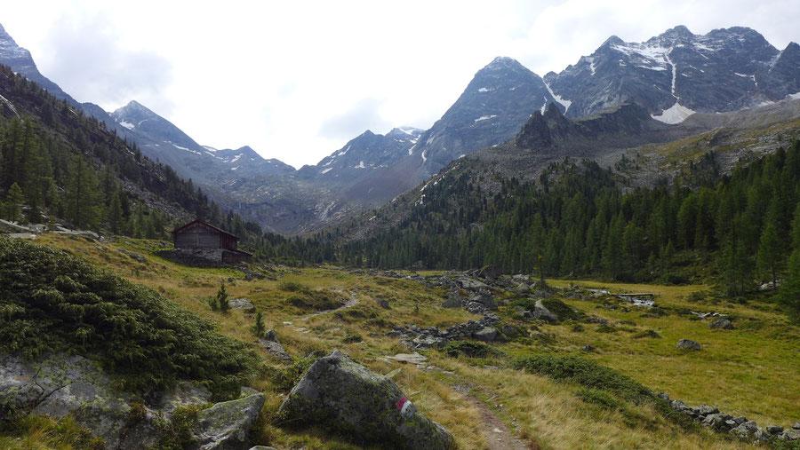 Gelttalalm - Wanderung, Gelltal, Rieserfernerhütte - Blickrichtung Talschluss