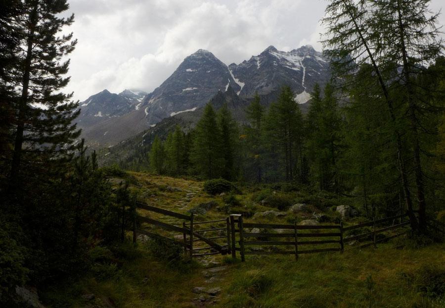 Gelttalalm - Wanderung, Gelltal, Rieserfernerhütte - Gelttalalm unter Wasserkopf und Fensterlekofel