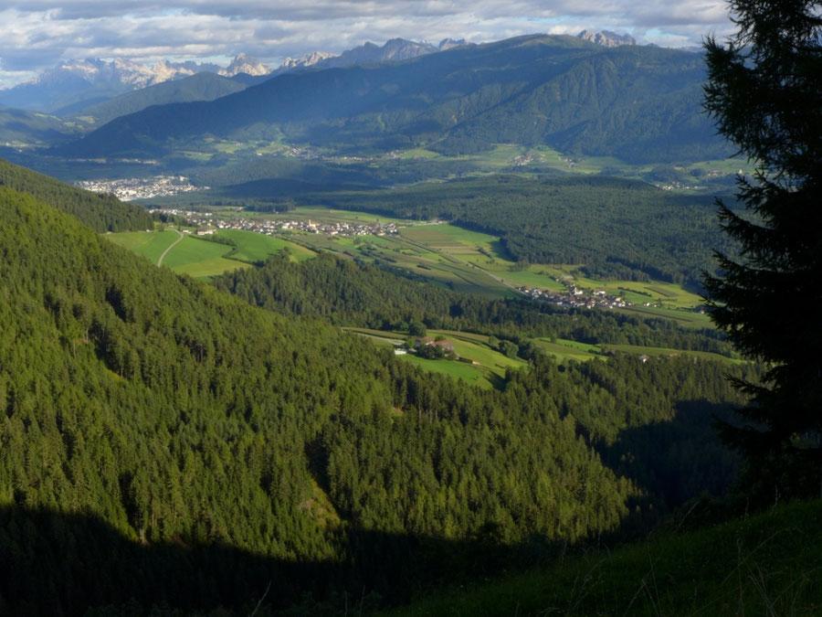 Pfunderer Höhenweg - Abstieg ins Pustertal - Wanderung, Pfunderer Berge, Südtirol