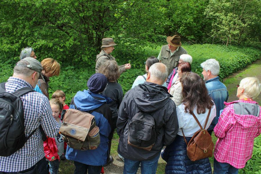 Führung Mai 2017 mit Heike Kroll, Obfrau für Naturschutz vom Hegering Delmenhorst