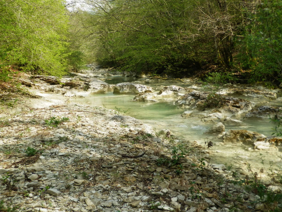entlang der türkisblauen Mirna wandern wir zurück nach Buzet