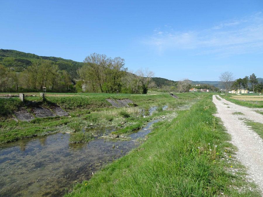 die Mirna, am Beginn ein regulierter Fluss