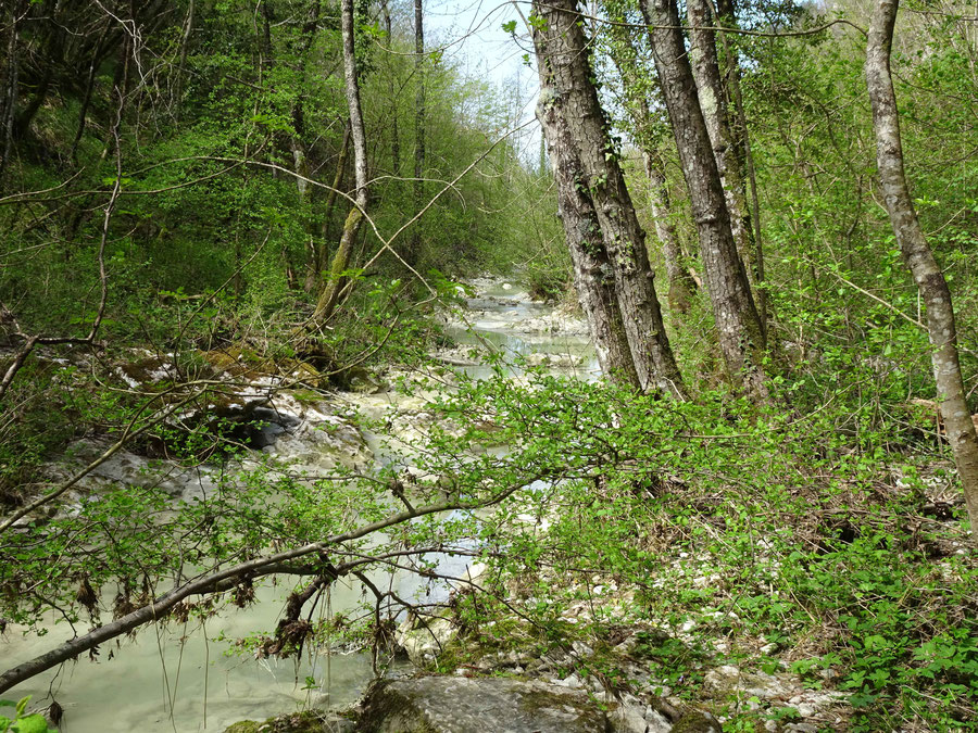 der Bach vom Wasserfall Mala Pec