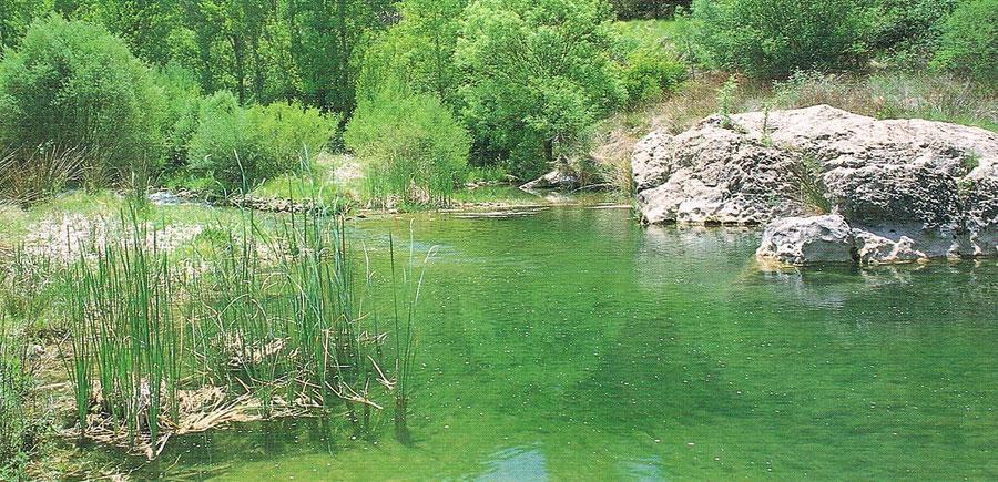 Río Bergantes en la provincia de Castellón, en la Comunidad Valenciana. España.