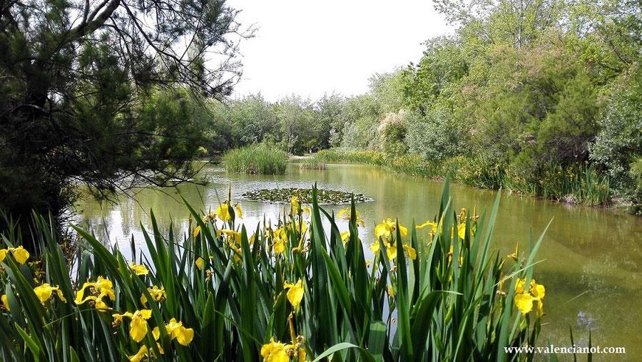 Situado al lado del Centro Cultural  del barrio de san Marcelino en Valencia,  se encuentra el Parque de la Rambleta.