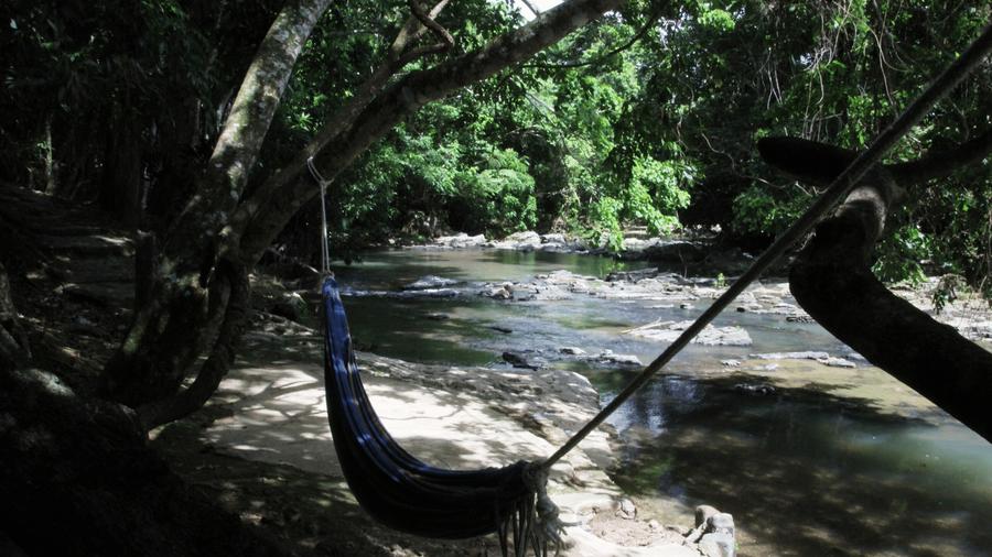 Hängematte Fluss Wald