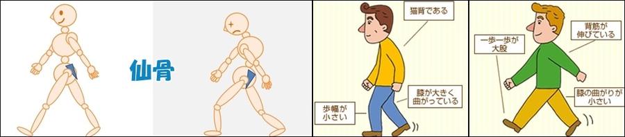 正しい姿勢と歩き方