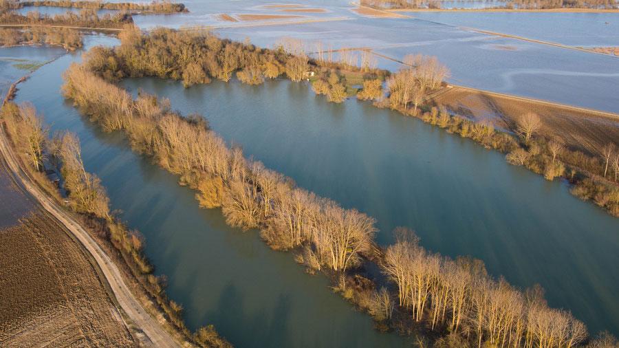 La marne en crue prés d'Aulnay-sur-Marne