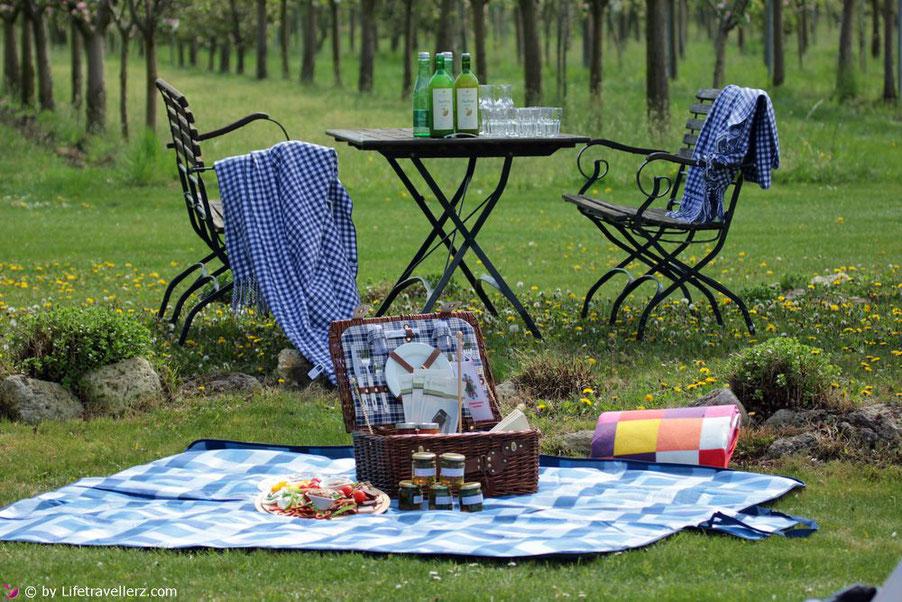 Picknick im Obstgarten der Vila Vita Pannonia