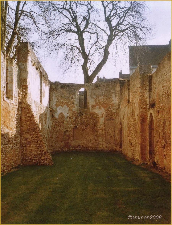 Ancienne église St-Lubin de Châteaudun