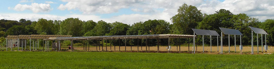 agrivoltaique eco solution energie