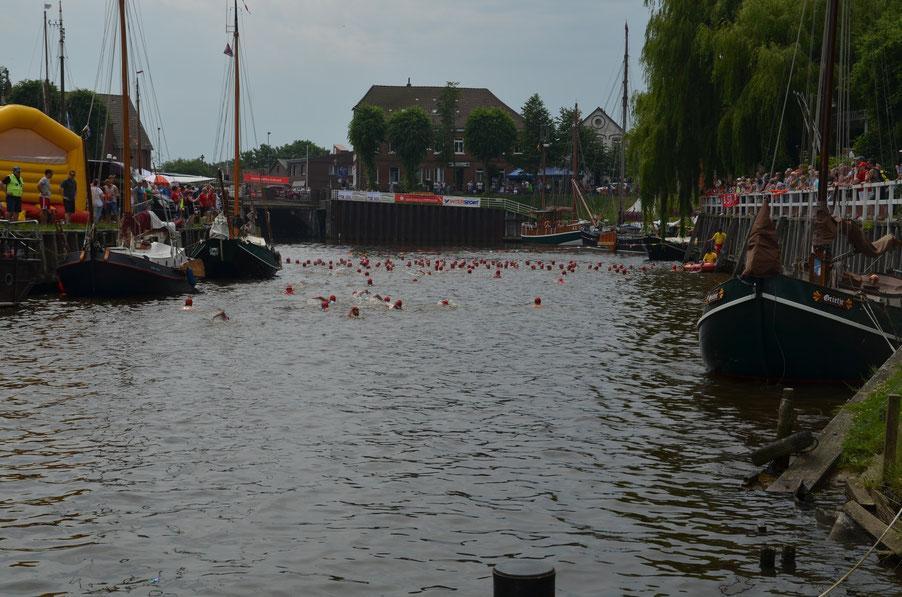 Schwimmstart im Museumshafen