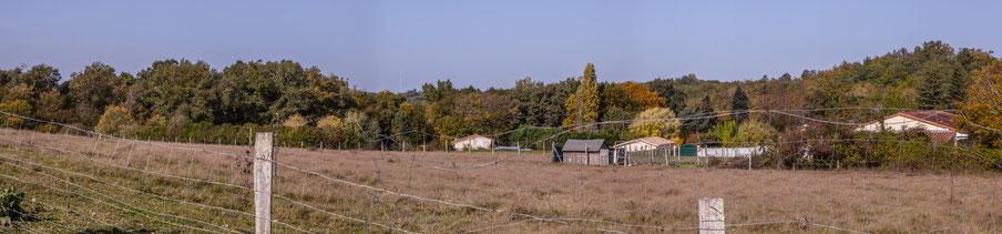 Zone agricole de Moutille, avec en fond la lisière boisée de la vallée du Rauzé. Avenue de Moutille, Cénac, Gironde. 16 octobre 2017