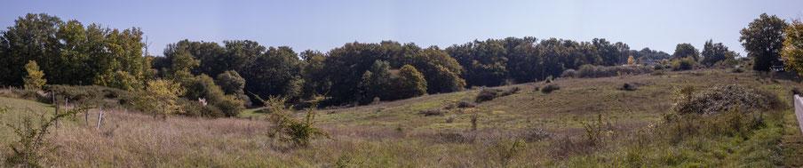 Panoramique 2. Anciennes terres agricoles du Domaine de Gratian, Cénac, Gironde. 16 octobre 2017