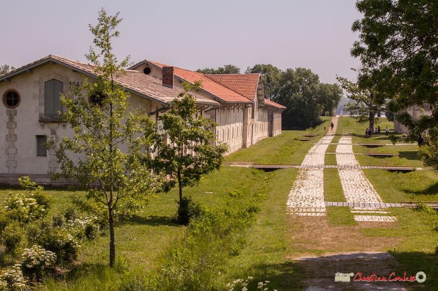 Village Sans-Pain, Île Nouvelle, Conservatoire du Litoral, Conseil départemental de la Gironde. Dimanche 6 mai 2018