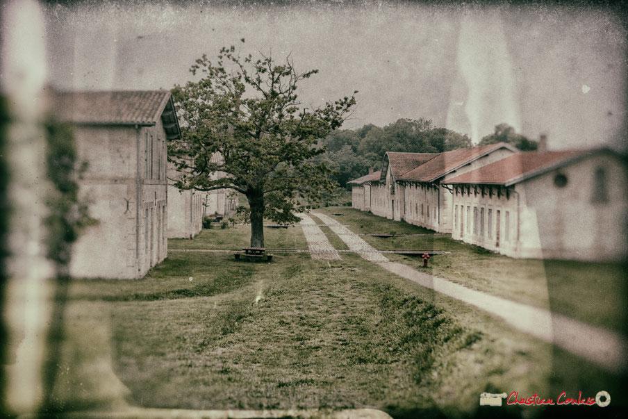 Village Sans-Pain de l'île Nouvelle, estuaire de la Gironde, à découvrir tout l'été. 6 mai 2018 ©Christian Coulais