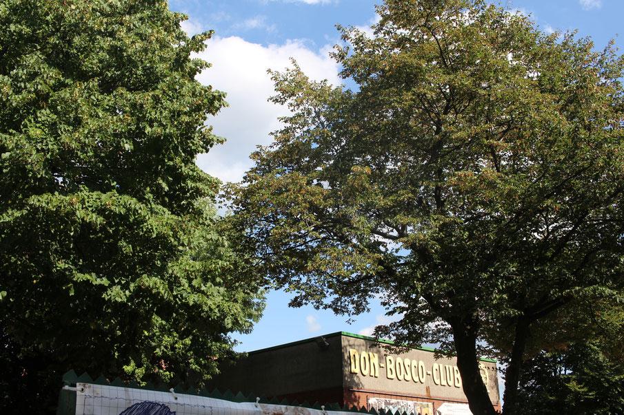 Der Don-Bosco-Club an der Tiefenthalstraße.