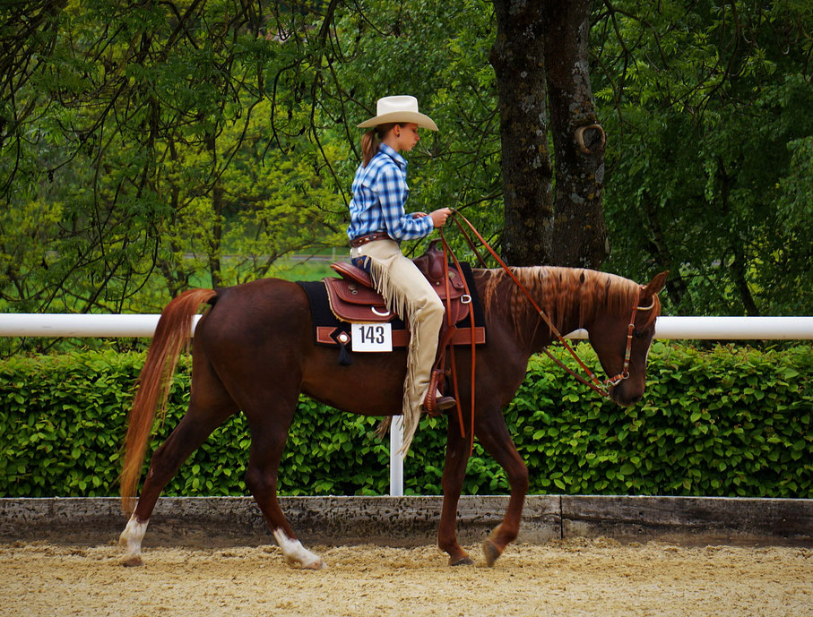Western Pleasure- Eiken 2013