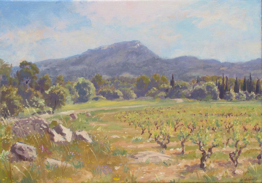 Tony Wahlander (Wåhlander) Paysage de Provence, Tableau du mont le grand Bessillon et la plaine de Pontevès