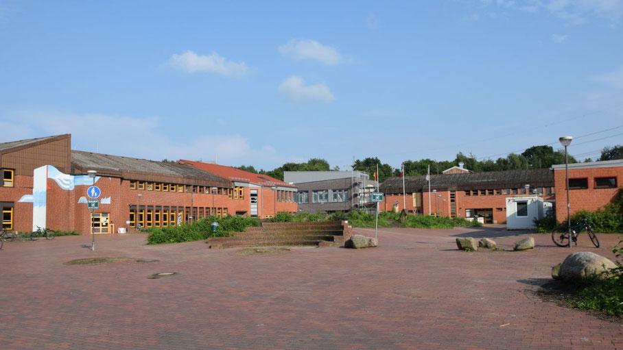 Weil sie direkt über der Kanalisation standen, mussten nach Angaben der Verwaltung die großen Bäume im Eingangsbereich  des Elsensee-Gymnasiums gefällt werden