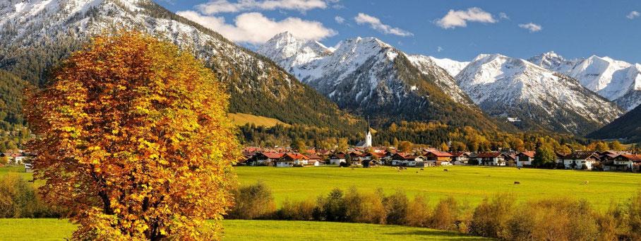 zu den Herbst- und Winterfarben...