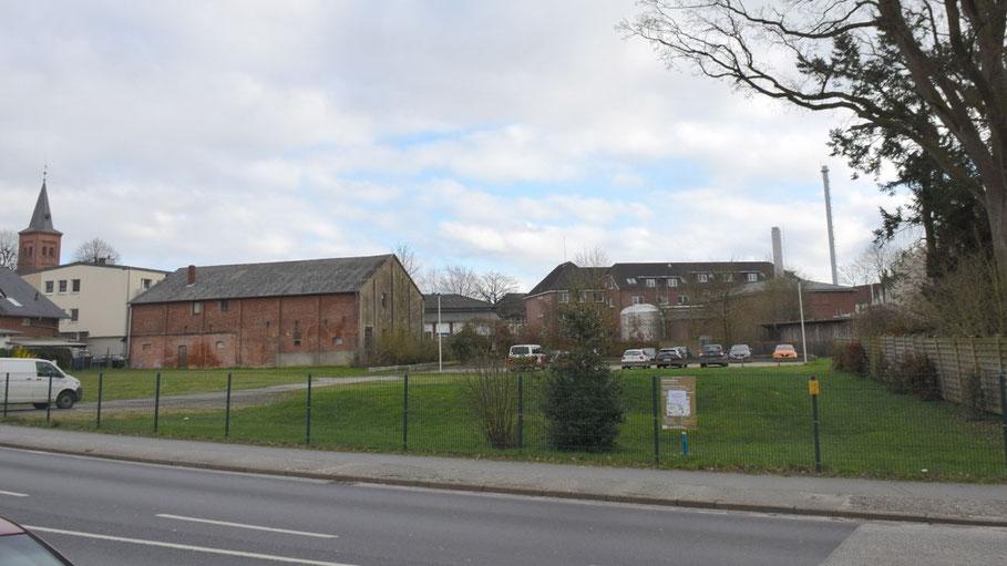 Auf der linken Seite dieser Wiese, auf der ein Gebäude mit der Polizeiwache entstehen soll, werden die Stadtwerke übergangsweise eine Blühwiese anlegen.