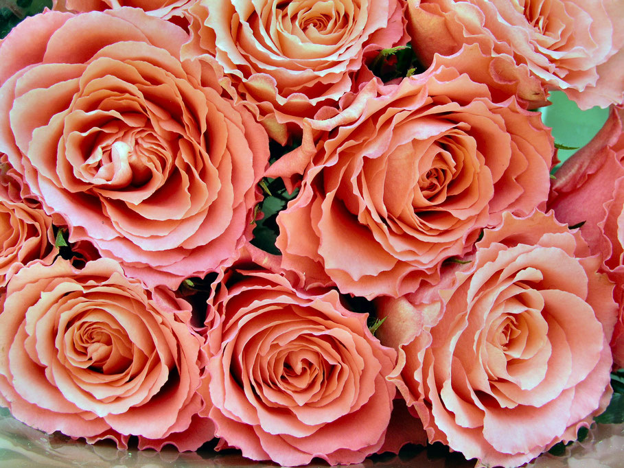 blog 20 petites attentions pour la saint valentin, bouquet de roses