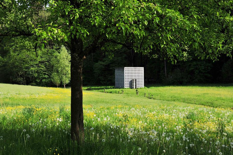 | Foto: Andreas Ender | www.grossartig.at/portfolio/natur-e - limited Edition of 10 | 80x60cm, 12 Farben Pigmentdruck auf handgeschöpftes Papier |