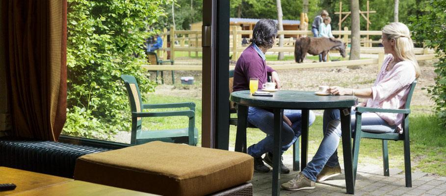 Pony vakantie Center Parcs