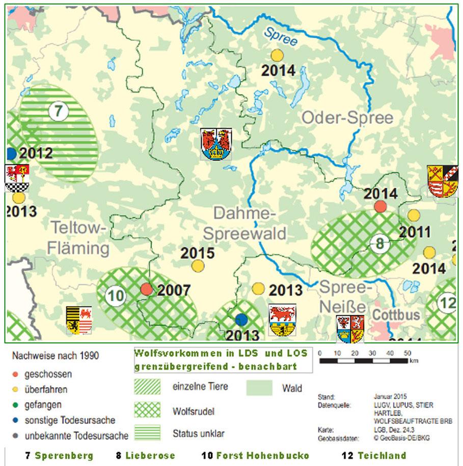 Wölfe In Brandenburg Karte.Wölfe In Dahme Spree Wölfe In Den Landkreisen Dahme Spree Und Oder