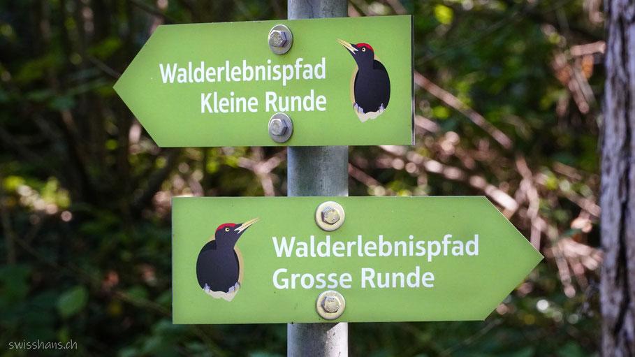 Schilder beim Walderlebnispfad Vaduz